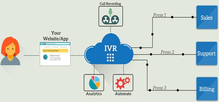 IVR Number Service Provider