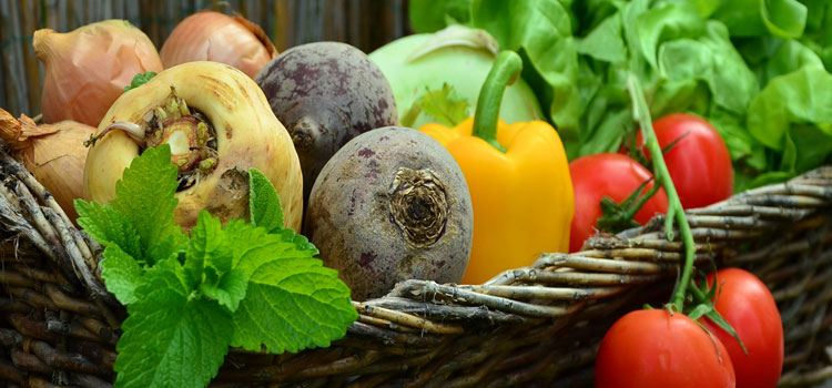 Organic Vegetables in Delhi