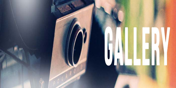 The Gallirry Mobile And Accessories