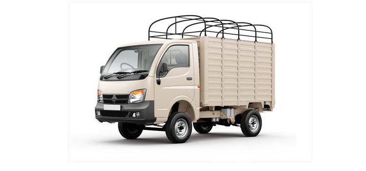 Delhi Dankaur Transport Company