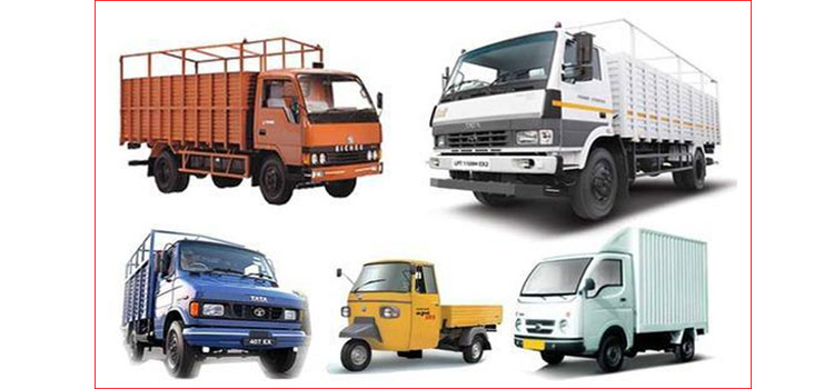 International Road Carrier