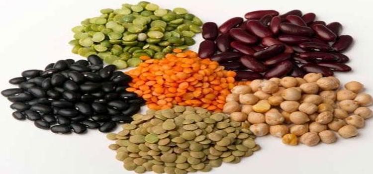 Organic Daal in Noida
